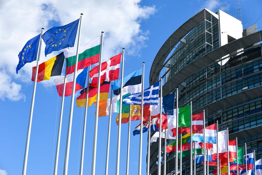 Les commissions de l'UE avortent les manœuvres malveillantes du Polisario et de ses lobbyistes